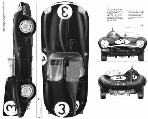 Jaguar D-type Longnose (1956)