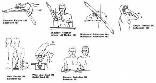 Arm + Wrist Movement