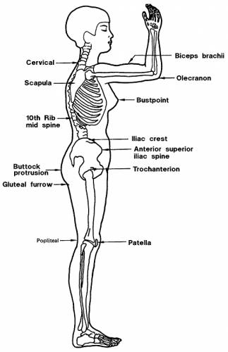Body Medical Terms