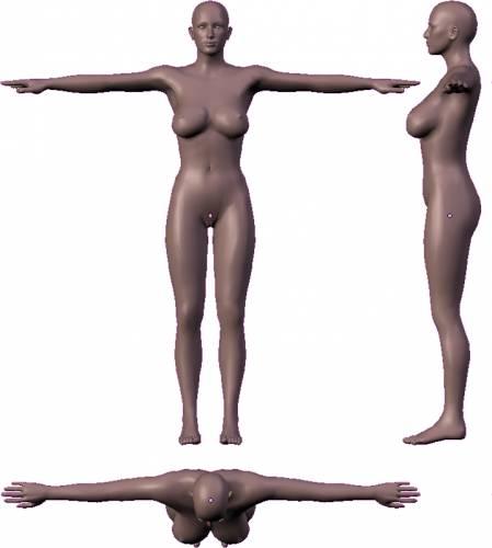 Female - Voluptuous