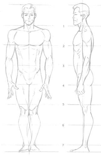 Male 8