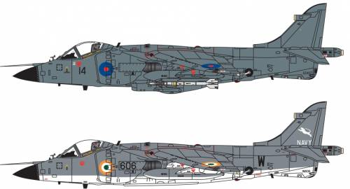 BAe Sea Harrier FRS.1