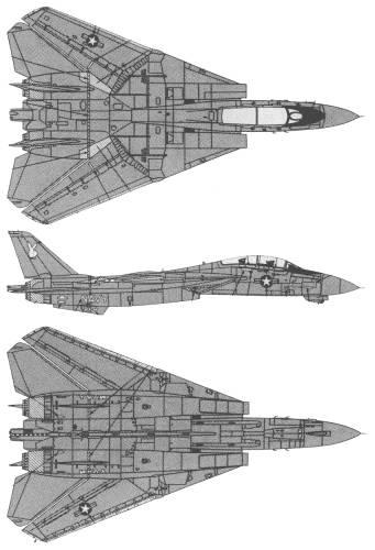 Grumman F-14A Black Tomcat