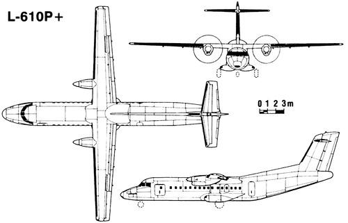 Let L-610P+
