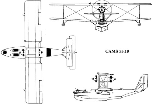 CAMS 55.10