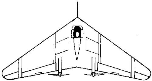 Northrop N-1M (1940)