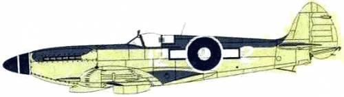 Supermarine Seafire F.XVI