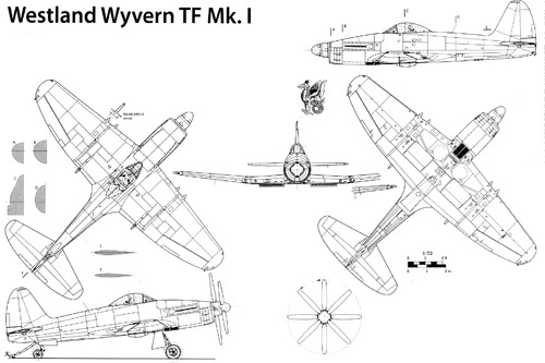 Westland Wyvern TF Mk.I