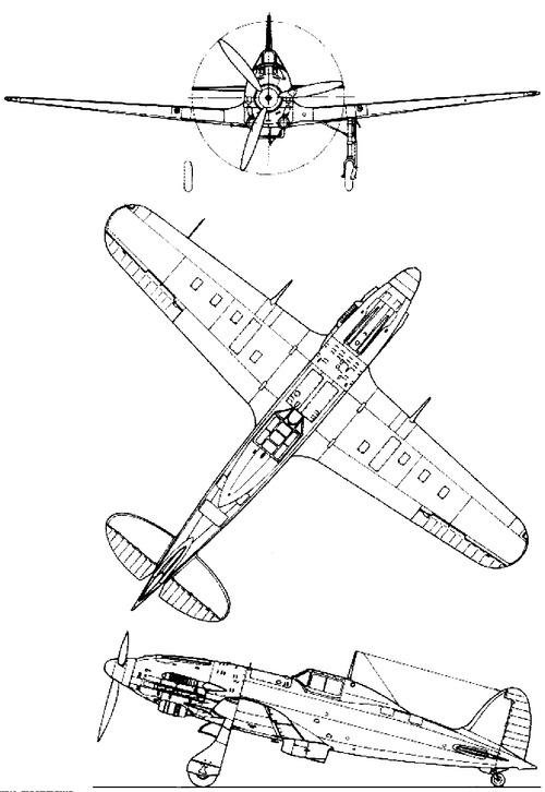 Macchi C.206 Tuono