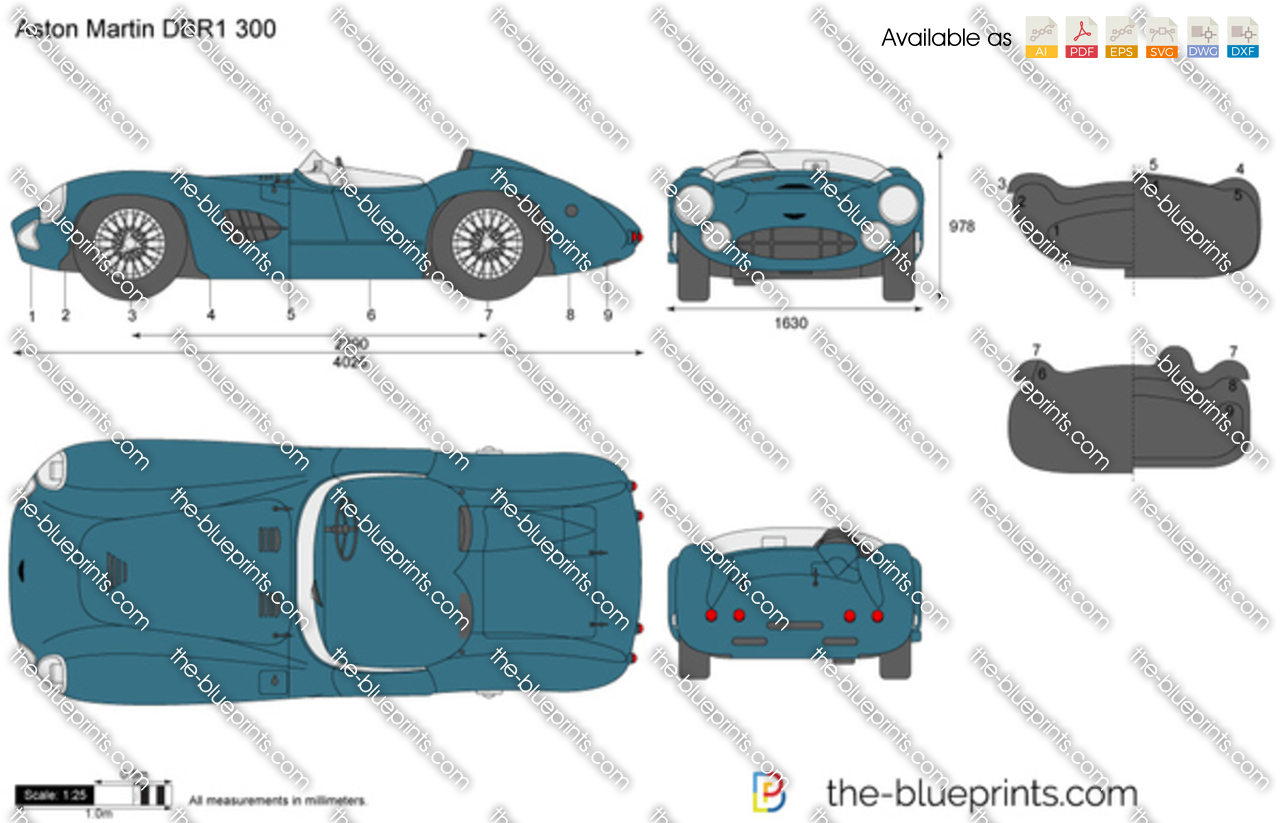 Aston Martin DBR1 300 1960