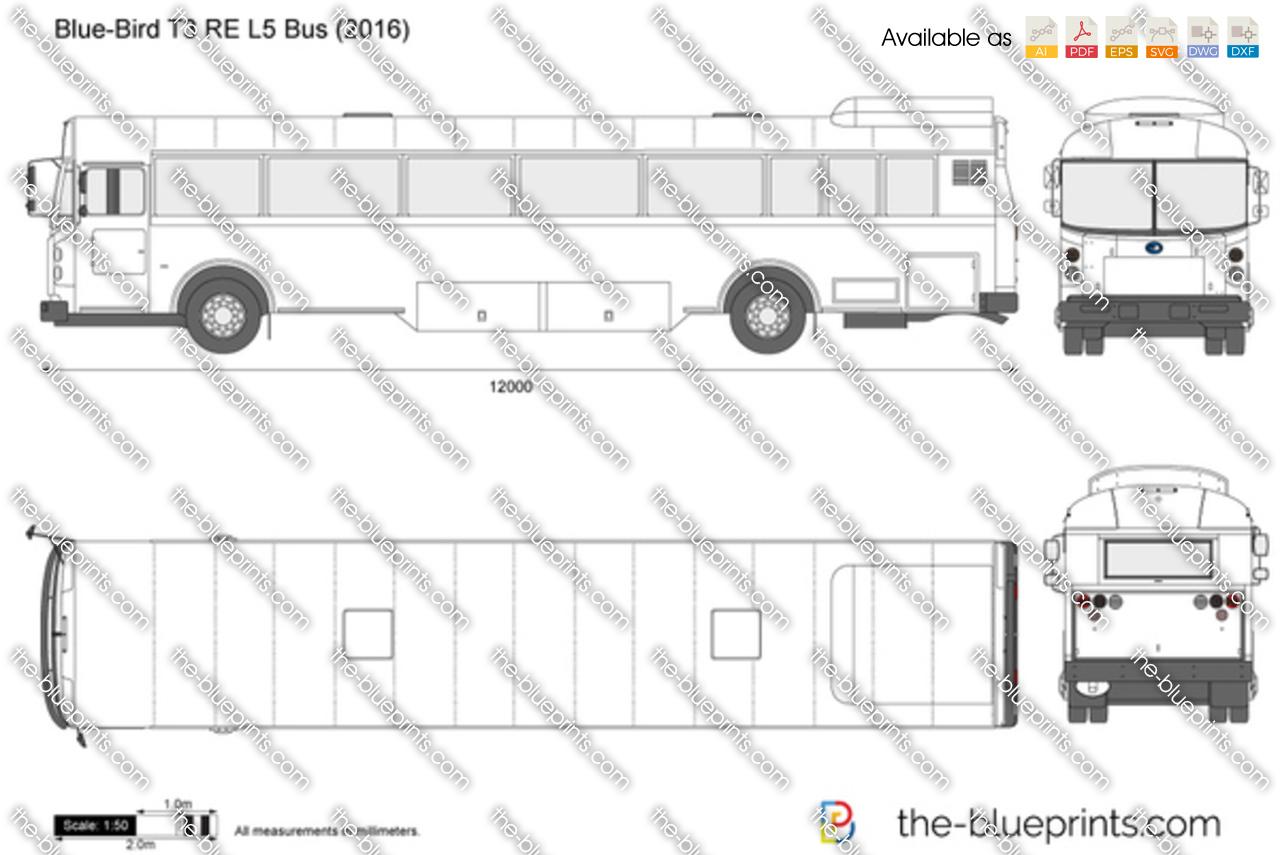 Blue-Bird T3 RE L5 Bus 2018