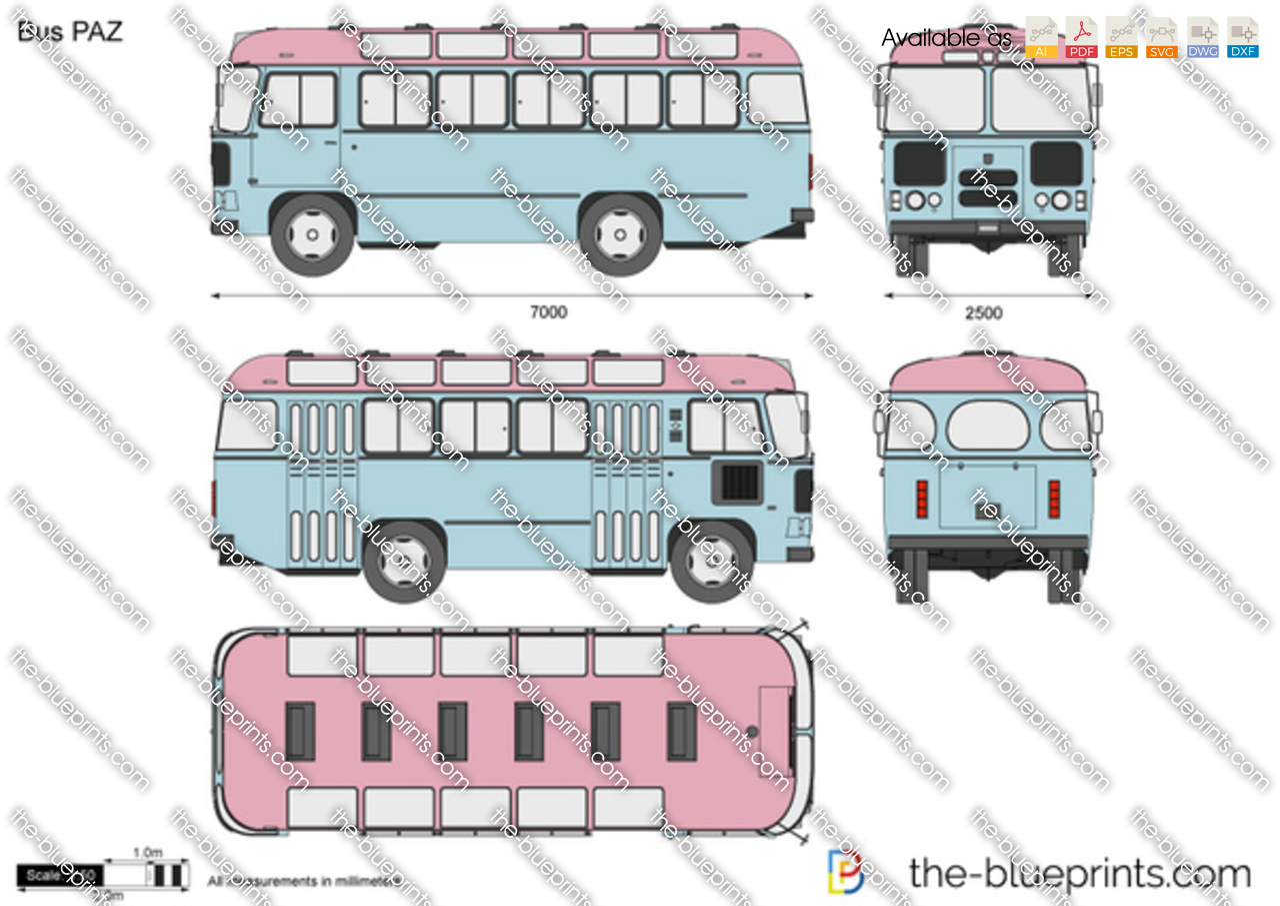 Bus PAZ