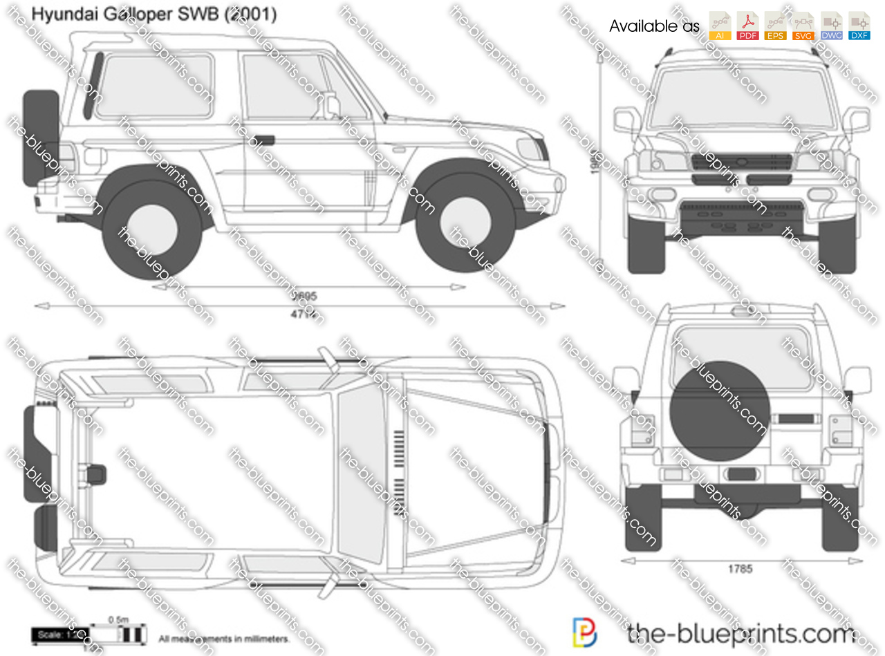 Hyundai Galloper SWB 1991