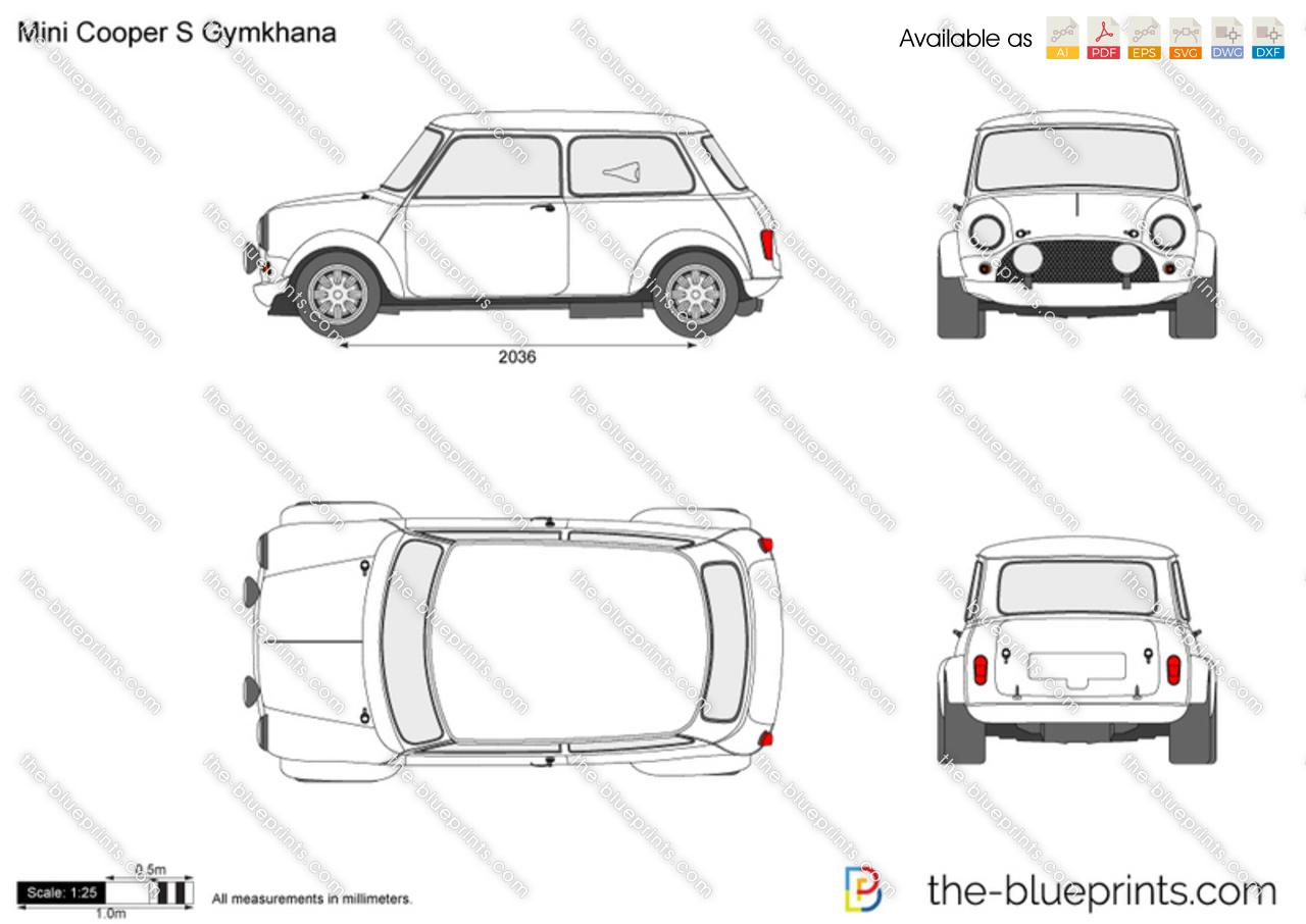 Mini Cooper S Gymkhana