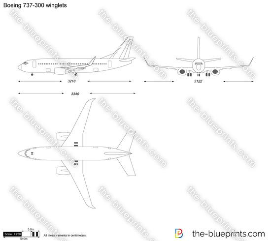 Boeing 737-300 winglets