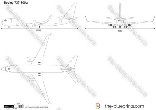 Boeing 737-800w