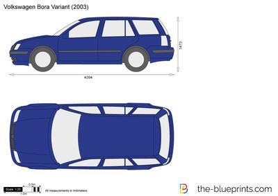 Volkswagen Bora Variant (2003)