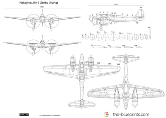 Nakajima J1N1 Gekko (Irving)