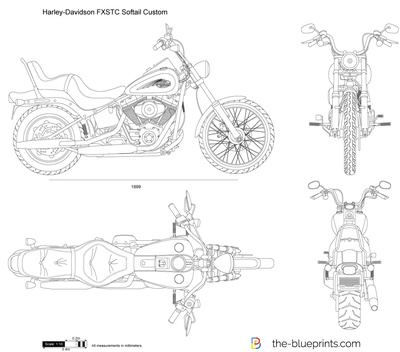 Harley Davidson Fxstc Softail Custom Vector Drawing