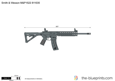 Smith & Wesson M&P1522 811035