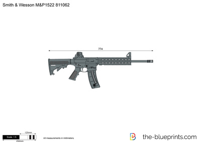 Smith & Wesson M&P1522 811062