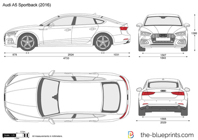 Audi A5 Sportback Vector Drawing