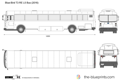 Blue-Bird T3 RE L5 Bus