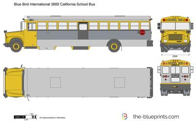 Blue Bird International 3800 California School Bus