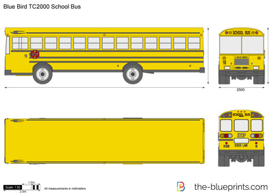 Blue Bird TC2000 School Bus
