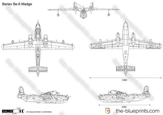 Beriev Be-6 Madge