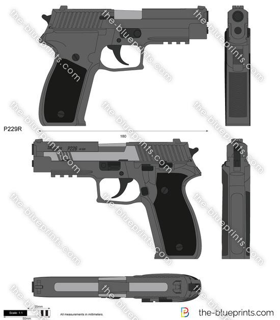 SIG Sauer P229R